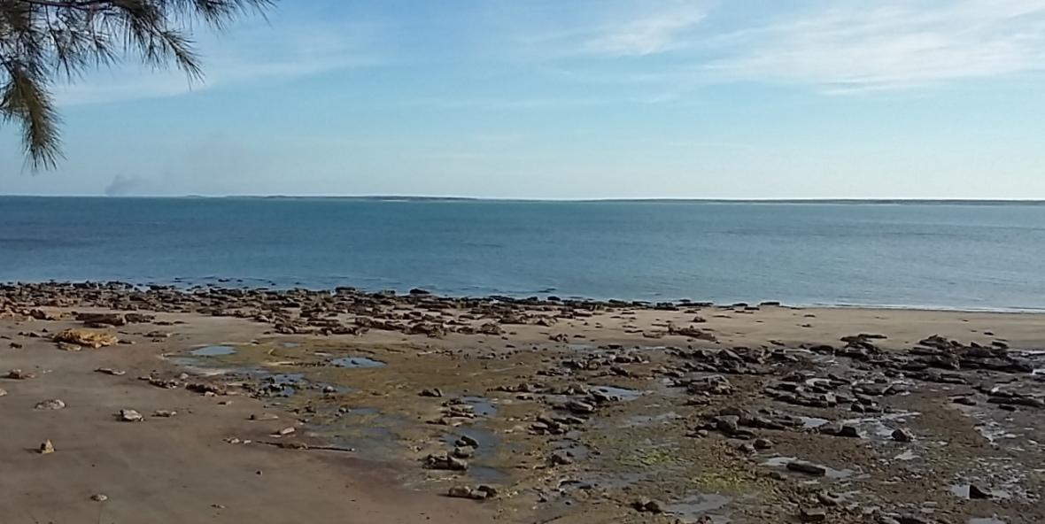 Darwin-Eastpoint4