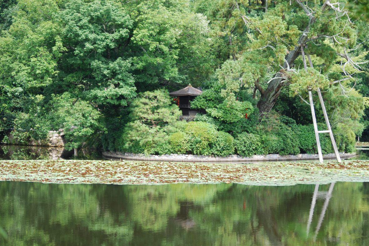 Kyoto-Riyoanji6