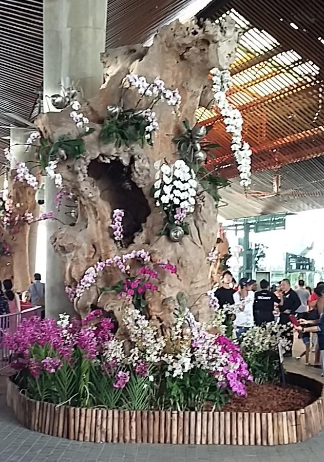Singapore2-flower
