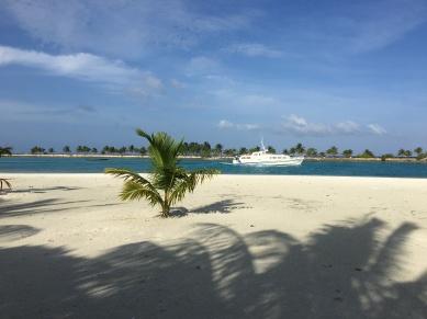 beach11