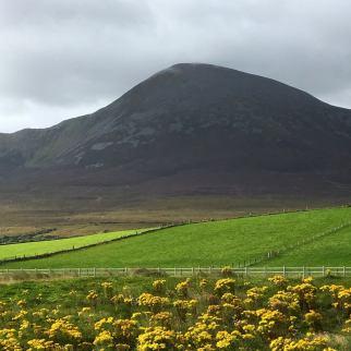 croagh-patrick-mountain
