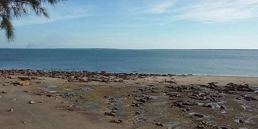 East Point Reserve, Darwin, Norhern Territories, Australia, August 2016