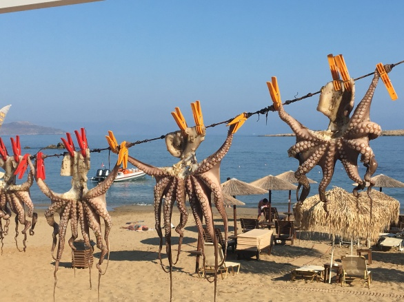 chania-drying-octopus