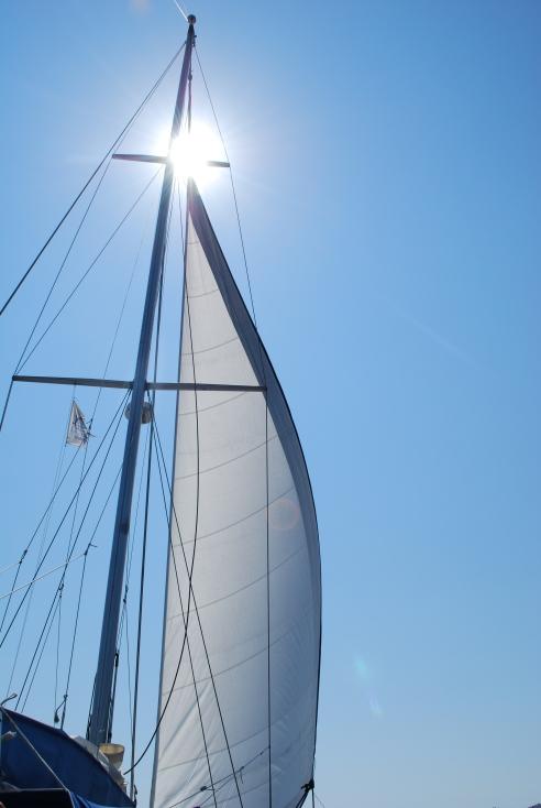sailing8