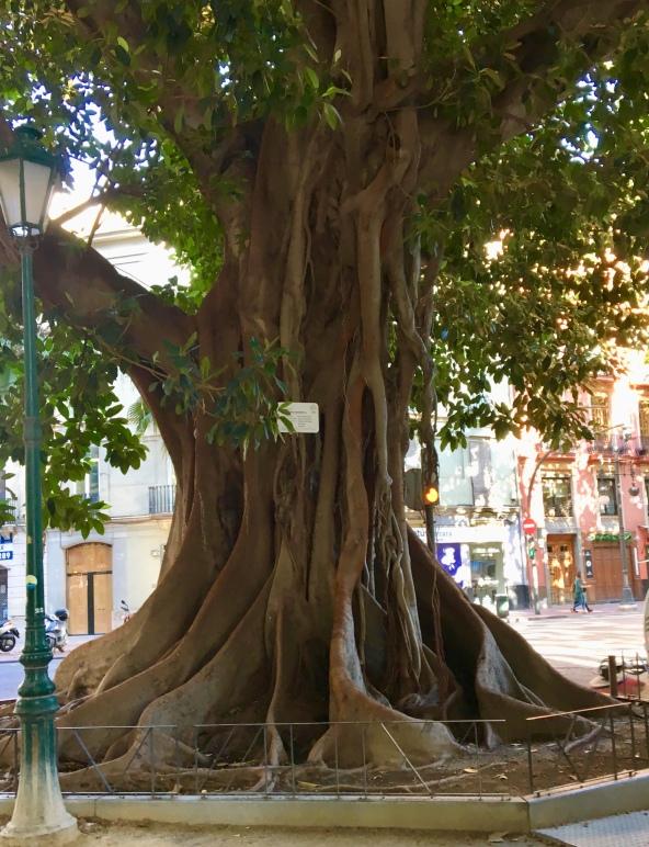 avatr tree